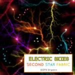 electricskiesflash