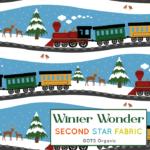 WinterWonder-01